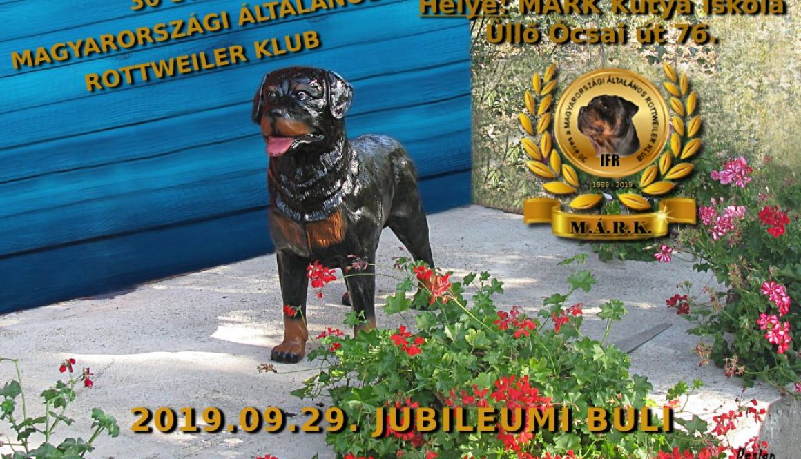 buli1